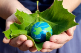 UK-project-to-tackle-food-industry-sustainability-challenges_dnm_homepage