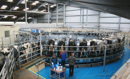 Meadow Foods to Increase Milk Price