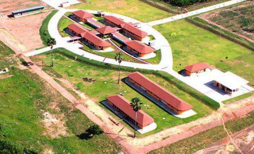 Nestlé Inaugurates Experimental Farm in Côte d'Ivoire