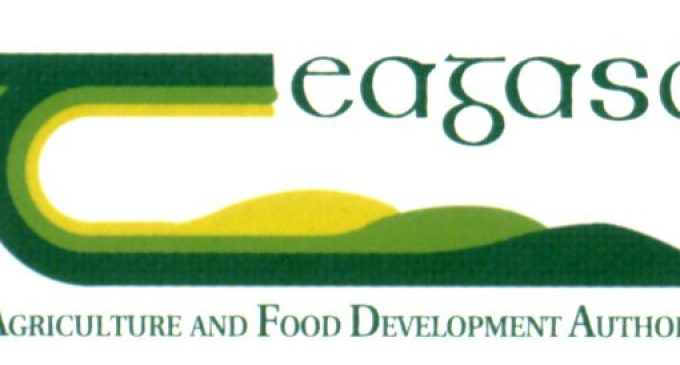 Teagasc Launches New Walsh Fellowships Model