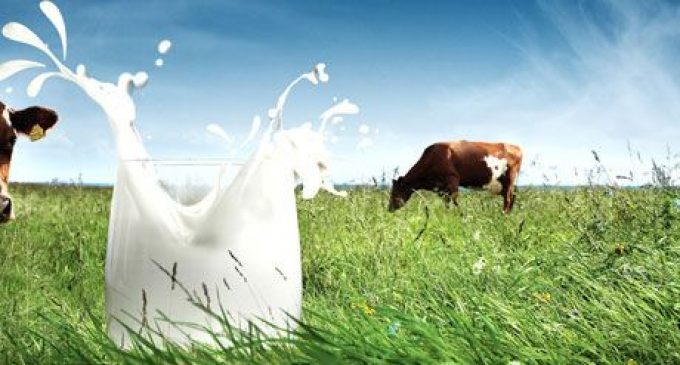 Arla Expects to Serve 25 Billion Glasses of Milk in 2014