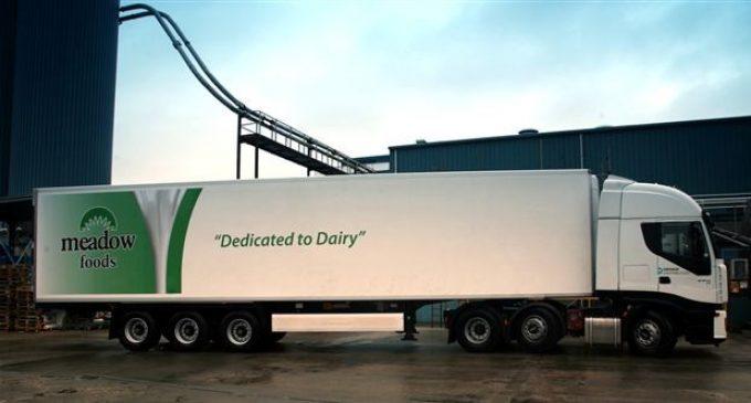 Dairy Ingredients Fuel Profit Growth at Meadow Foods