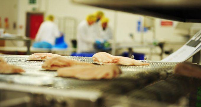 Icelandic Group Acquires Icelandic Primary Fish Processor