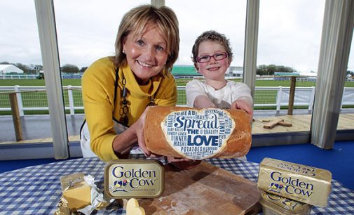 Golden Cow Creates 23 New Jobs in Northern Ireland