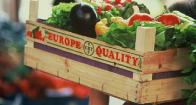 New Research Shows Significant Nutritional Differences Between Organic and Non-organic Food
