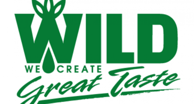 Ice-cold innovations: Compelling new ice cream products from WILD