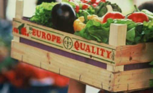 EU Research Turning Food Waste into Feed