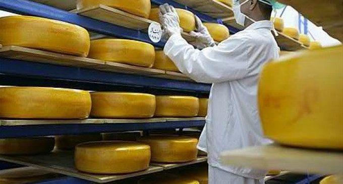Arla Foods Makes Non-binding Bid For Egyptian Dairy