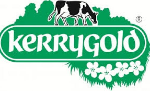 Sales of Kerrygold products expected to grow 30% in US this year