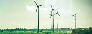 windfarm sustainability